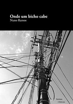08.Capa-Nuno-Ramos-publicar-livro